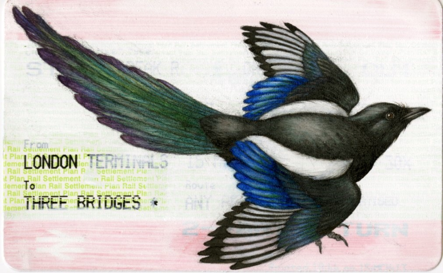 Magpie (2013) by Niroot Puttapipat