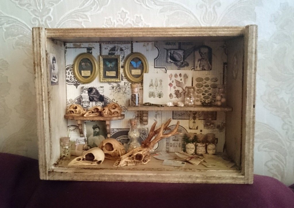Cabinet of Curiosities shadowbox by poppenkraal